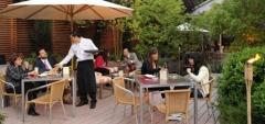Hotel Atton el Bosque - Terrace
