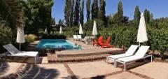 Finca Adalgisa - Pool