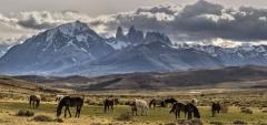 Awasi Patagonia - Excursions