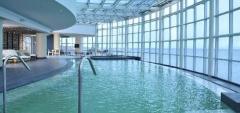 Dreams - Swimming Pool