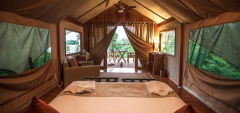 Galapagos Safari Camp - Luxury Tent