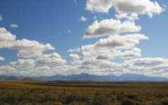 The Patagonian Steppe